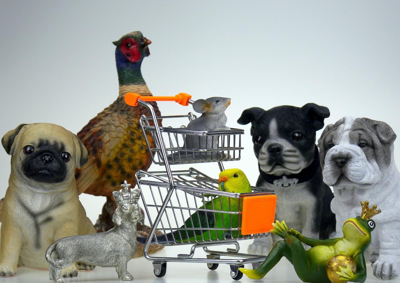 Dlaczego należy do diety zwierząt dołączyć suplementy?